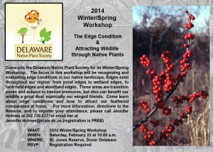 Delaware Native Plan Society winter workshop postcard