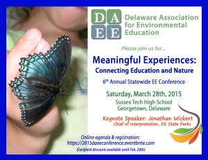 2015 DAEE Conference Flyer